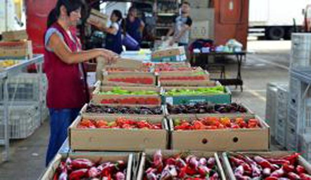 Estiagem eleva preços de hortifrutigranjeiros na Ceagesp