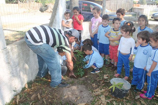 Alunos de Balneário Rincão plantam mudas de árvore