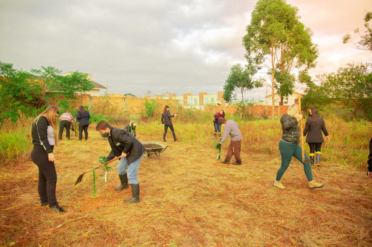 Área verde é arborizada pela equipe da Fundai no Bairro Tereza Cristina