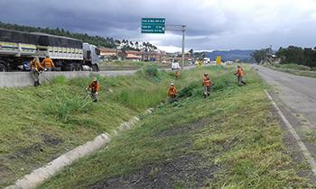 BR-101 tem roçadas sobre pistas entre Treze de Maio e Jaguaruna