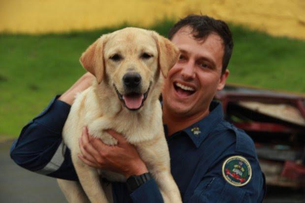 CBMSC tem mais uma dupla formada por bombeiro e cão certificada
