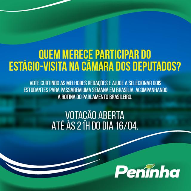 Internautas decidirão indicados para estágio em Brasília
