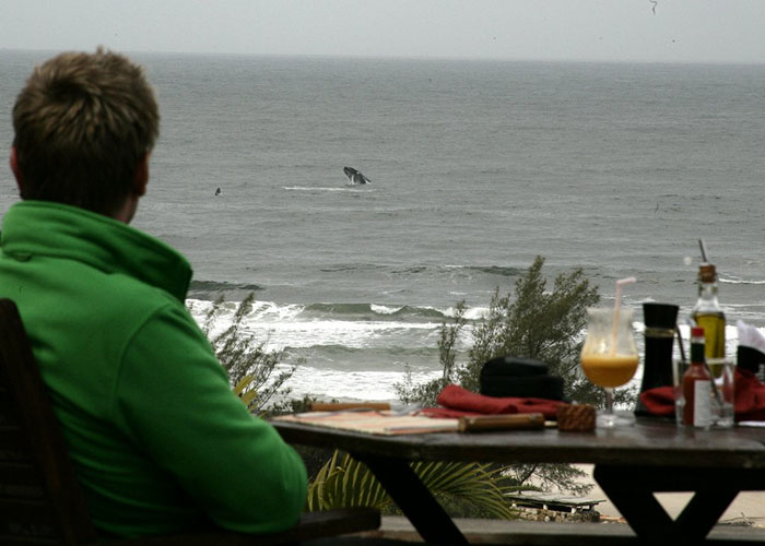 Del Vino: Praia do Rosa alia gastronomia e vinhos para atrair visitantes