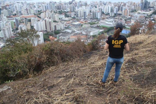 Método do IGP ajuda a quantificar valores de desmatamentos florestais em SC