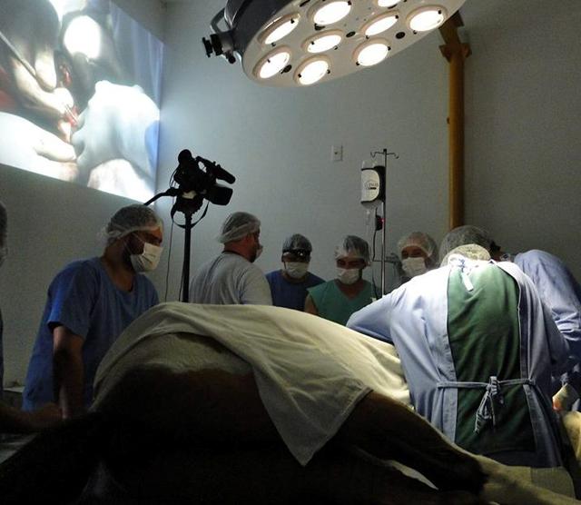 Medicina Veterinária do Unibave é nota 4 em avaliação do MEC