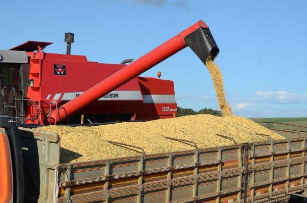 SC bate recorde na exportação de soja nos quatro primeiros meses do ano
