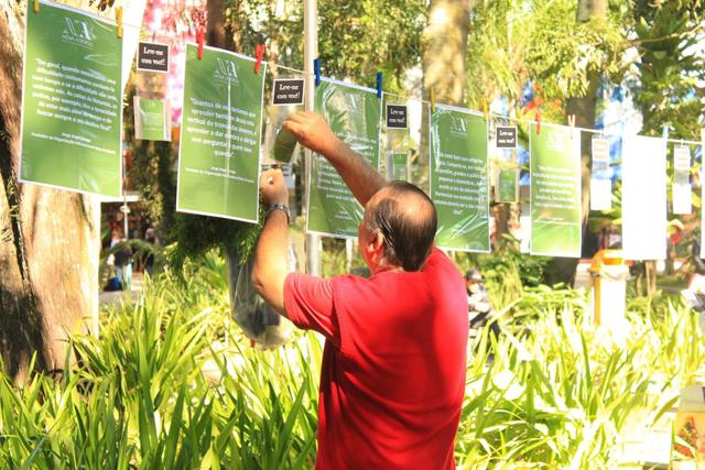 Varal e Distribuição de Mudas Marcaram a Semana do Meio Ambiente 2018 em Criciúma