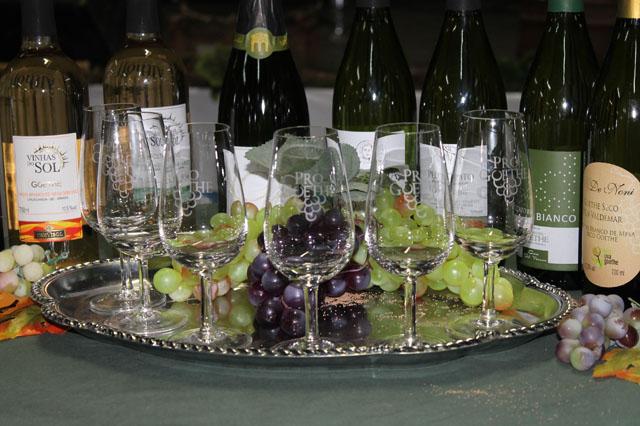 Público será orientado sobre vinhos durante a XVII Festa do Vinho