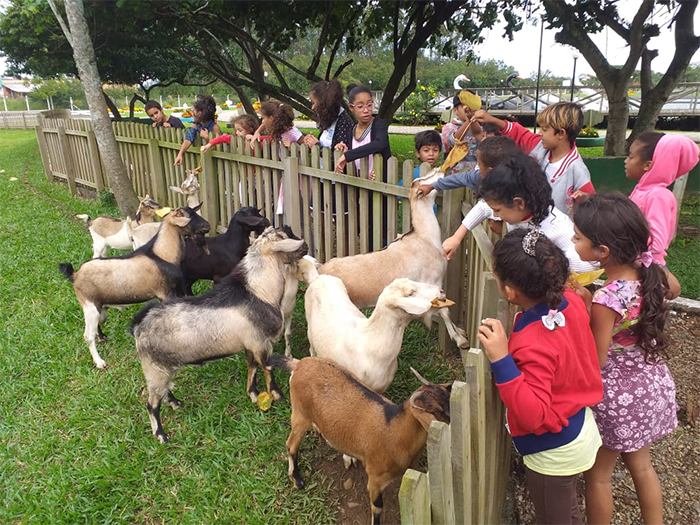 CRAS Santa Luzia visita Horto Florestal de Forquilhinha