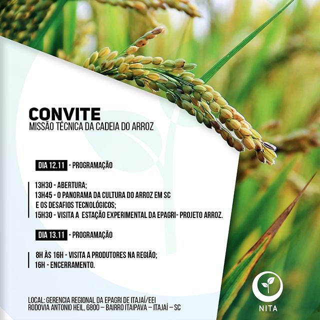 Missão técnica apresenta a cadeia produtiva do arroz aos empreendedores catarinenses