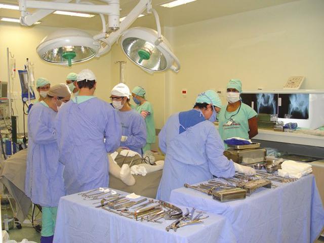 Santa Catarina mantém liderança na doação de órgãos no país