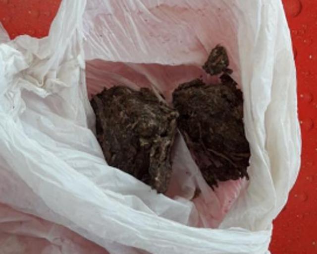 Polícia Militar de Araranguá segue firme no combate às drogas