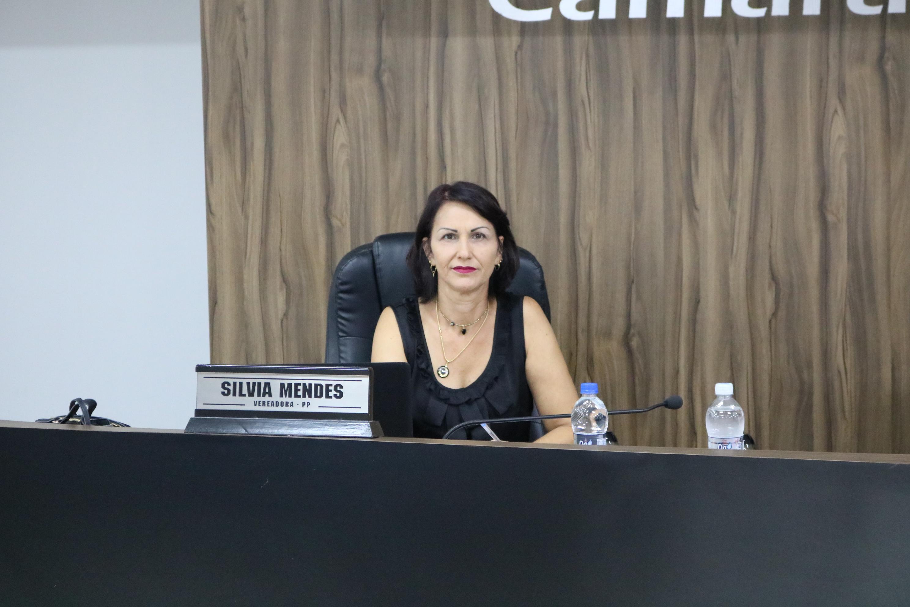 Vereadora Silvia alerta sobre necessidade de consertar boca de lobo