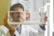 Professor da Unesc participa de simpósio de pesquisadores em Natal