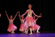 Com a presença de Ana Botafogo, Unesc em Dança inicia 19ª edição
