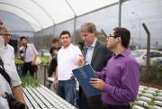 Parceria com Cambridge: Estufa hidropônica solar é inaugurada