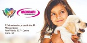 Feira de Adoção da ONG Amigo Bicho terá parceria da Pedigree