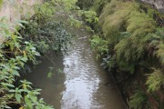 Iniciado o diagnóstico ambiental do leito do Rio Criciúma