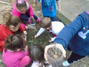Crianças do Grupo 5 do CEI Afasc Centro Social Urbano trabalham preservação do Meio Ambiente