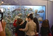 """Museu de Zoologia da Unesc é sede do encontro estadual """"Museu e Educação"""""""
