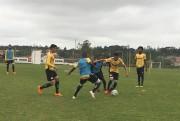 Tigre tem desfalques para o jogo contra o Avai