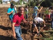 Fiéis plantam 230 mudas no Bairro Demboski em Içara