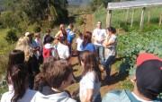 Estudantes de Siderópolis conhecem propriedade agrícola