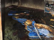 Tragédia em creche de Minas deixa 7 mortos e 43 feridos