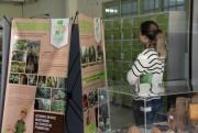 """Exposição Itinerante """"Nossas Florestas"""" chega ao Unibave"""
