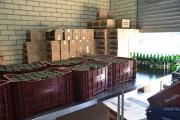 Vinícolas urussanguenses são destaque na Festa do Vinho