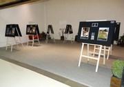 Ensinamentos de Platão em destaque no Criciúma Shopping