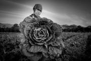 Fotógrafo da Secom de SC vence prêmio sul-americano de fotojornalismo