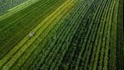 Santa Catarina lança programa de inovação voltado para o agronegócio