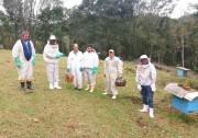 Apicultura cresce expressivamente em Quilombo