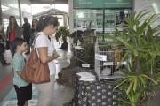 Ação do Museu de Zoologia promove conscientização no Dia dos Animais