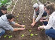 Curso de Agronomia do Unibave é nota 4 em avaliação do MEC