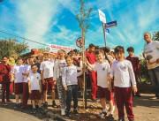 Após pavimentação, Rua Duque de Caxias recebe plantio de árvores