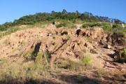Conheça o programa de Recuperação de Áreas Degradadas