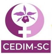Conselho Estadual da Mulher abre seleção para sociedade civil em SC