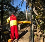 Ciclone em SC: Corpo de Bombeiros Militar encontra vítima desaparecida em Canelinha