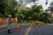 Ciclone em SC: Fenômeno provoca ocorrências em 101 municípios de SC