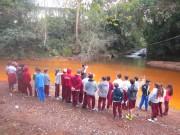 Mês de junho será marcado por ações voltadas ao Meio Ambiente em Araranguá