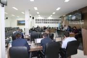 Vereadores aprovam projeto de lei para cooperação técnica com a ABAA