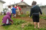 Após projeto, SCFV implantará horta no Cras do bairro Renascer