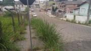 Vegetação toma conta do passeio na Rua Anita Garibaldi