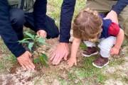 Dia da Árvore: IMA realiza plantio de mudas no Parque da Serra do Tabuleiro