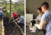 Içara: Fundai realiza dia D com colaboradores