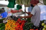 Sine de Santa Catarina oferece mais de 4,6 mil vagas de emprego nesta semana
