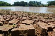 Epagri divulga manejos recomendados para diminuir prejuízos nos cultivos