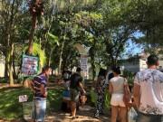 Amigo Bicho abre campanha para doação na conta da energia